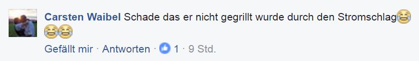 a_schade-dass-nicht-gegrillt